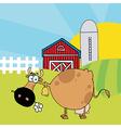 Cartoon cows on farm vector image