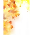 Autumn background with leaves plus EPS10 vector image