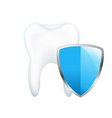 tooth with shield vector image