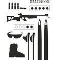 set of biathlon equipment vector image vector image