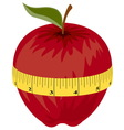 measuring tape around red apple vector image vector image