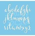 Handwritten brush style calligraphy cursive font vector image