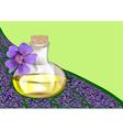Lavender oil vector image
