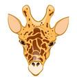 giraffe in cartoon style vector image