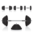 Set of dumbbells weights vector image