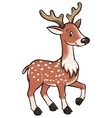 Lttle funny young deer or fawn vector image