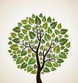 Tree2 vector image vector image