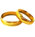 Couple of gold wedding rings Vector Image