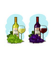bottle of red or white wine glass and grapes vector image