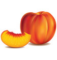 fresh peach with slice isolated on white vector image
