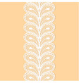 White lacy border vector image