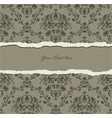 torn damask wallpaper vector image vector image