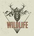 horned deer on mountains background vector image