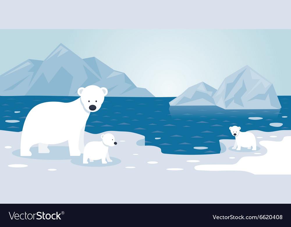 Arctic polar bear iceberg scene mother and baby vector
