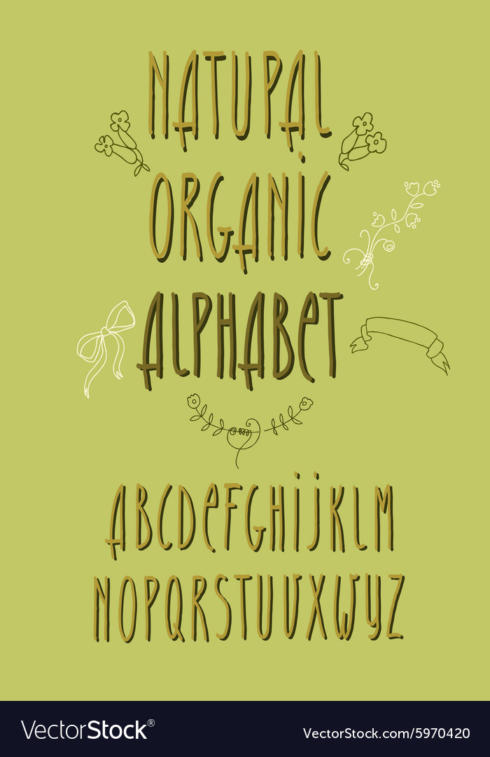 Decorative alphabet and floral elements vector