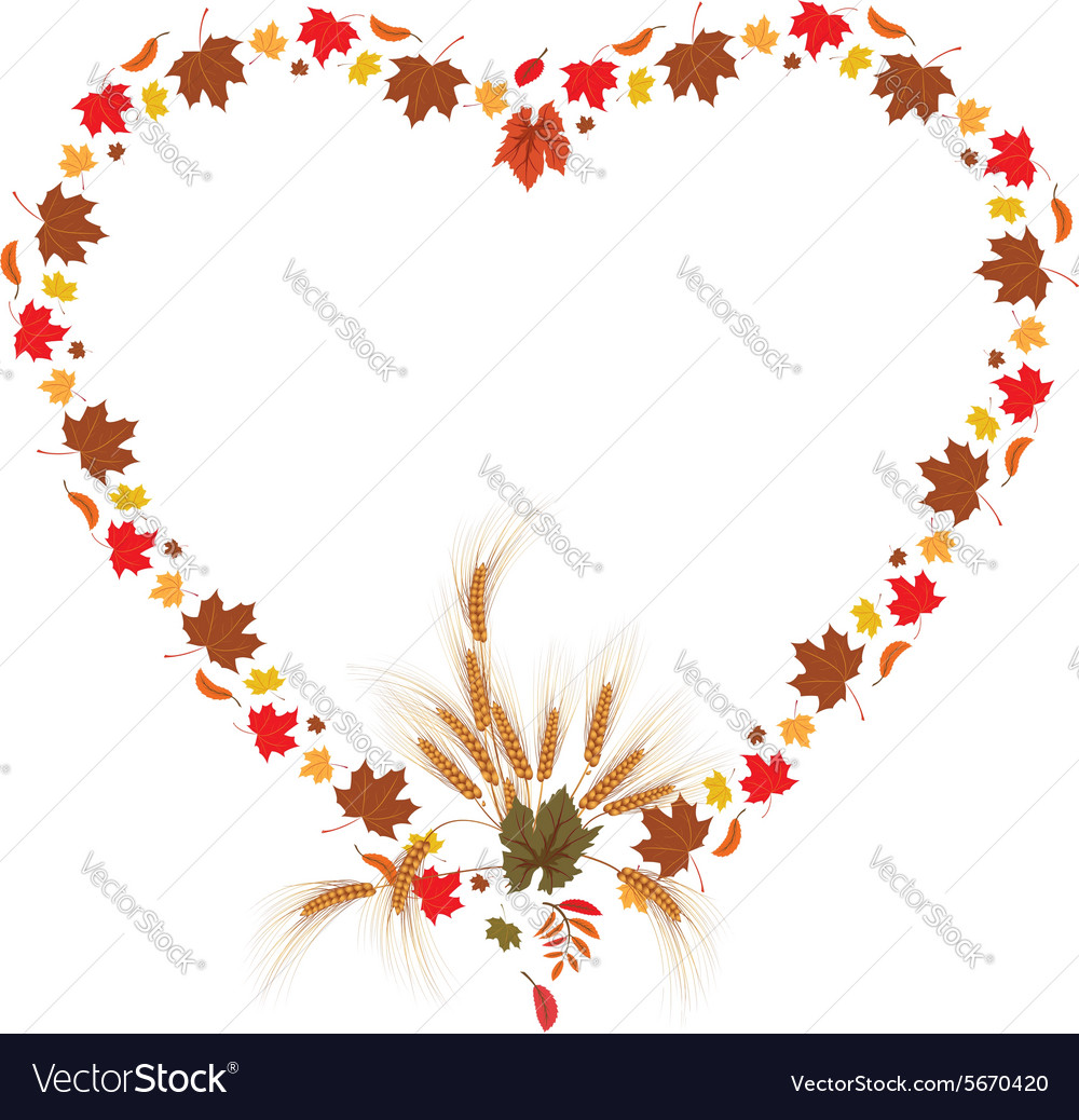 Leaves of maple and ears as heart vector