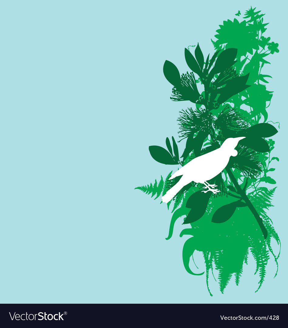 Tui and pohutukawa vector