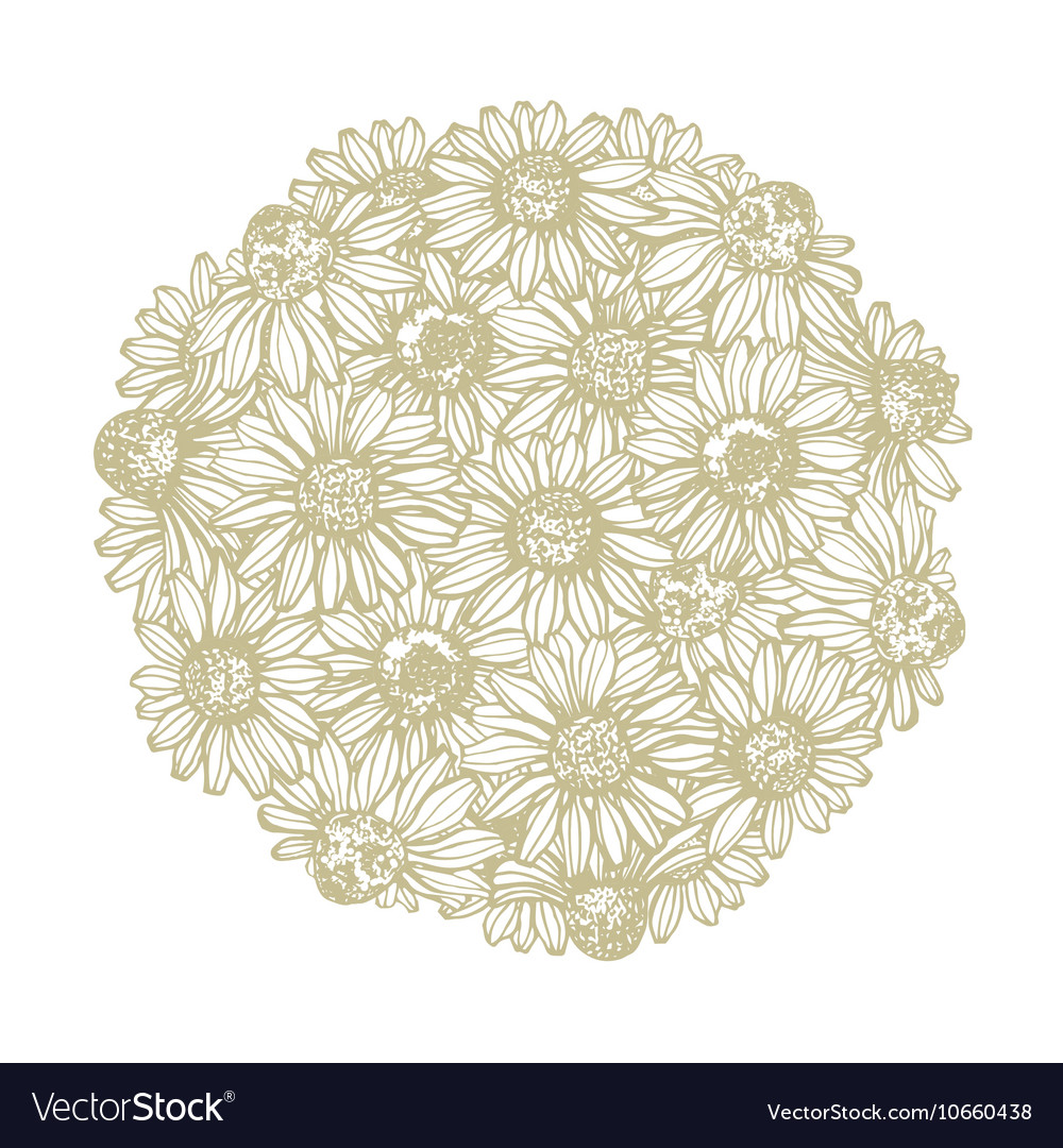 Composition with chamomile vector