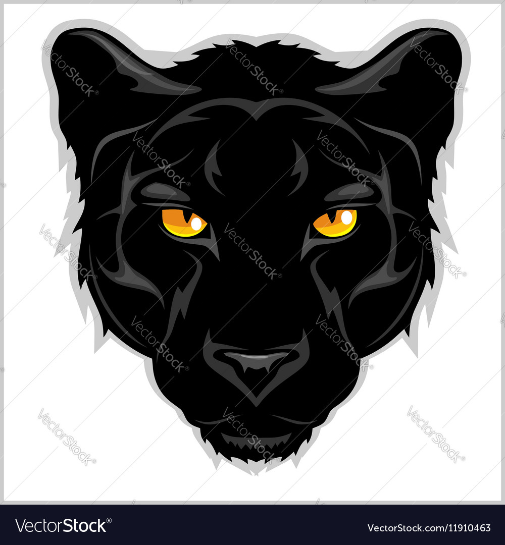 Black panther  on white background vector