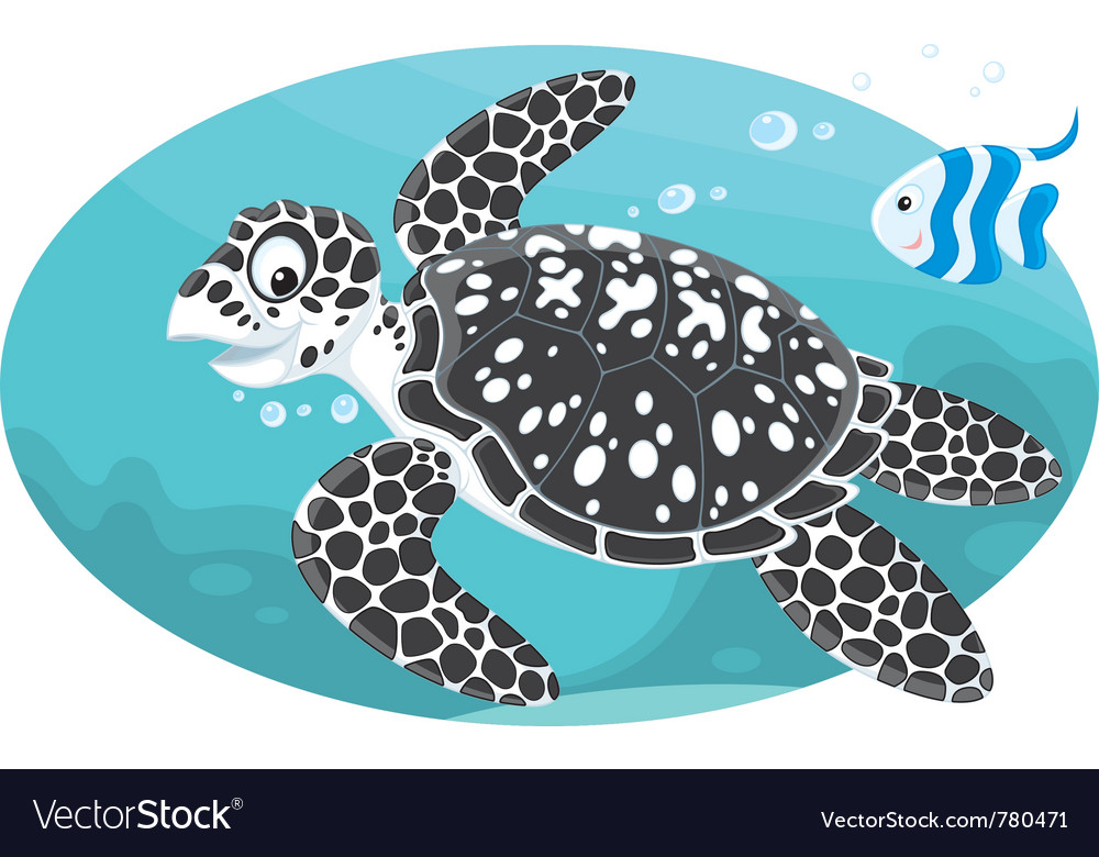Marine turtle and coral fish vector