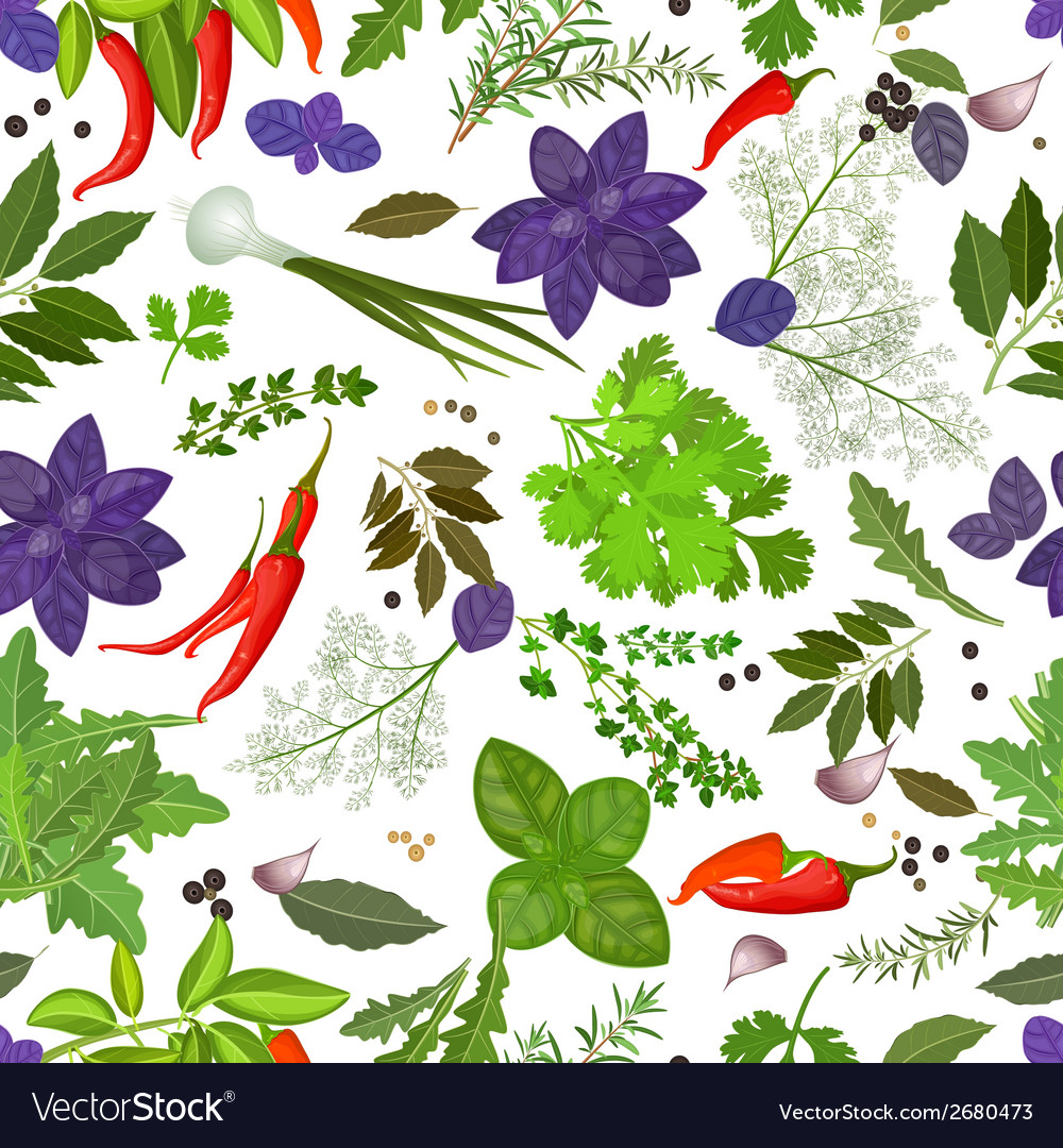 Seamless texture of herbs and spices vector