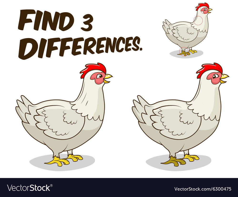 Find differences game hen chicken vector
