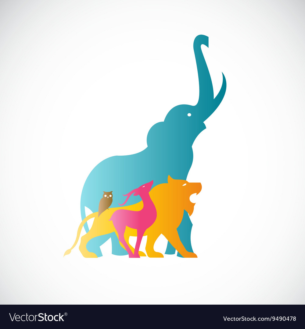 Image of an animal design vector