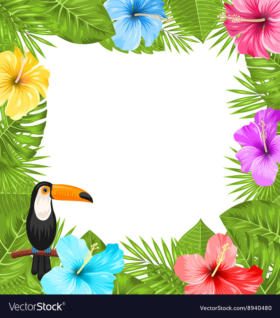 Exotic jungle frame with toucan bird colorful vector