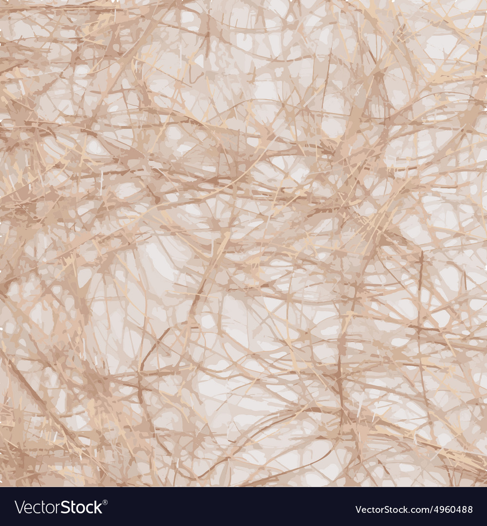 Raffia background vector