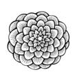 flower 209 22 vector image