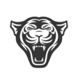 Panthers head logo for sport club or team Animal vector image
