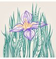 decorative drawing of a flower vector image vector image