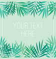 tropical palm leaves background template vector image