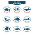 Fish icons in vector image
