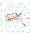 Seamless pattern shrimp vector image