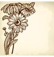 daisy bush vector image