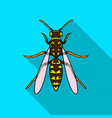 wasp icon in flat style isolated on white vector image