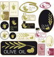 set of olive oil labels vector image vector image