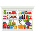 Fresh produce and glass bottles with preserved vector image vector image