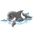 cartoon dolphin vector image vector image