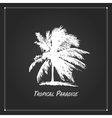 Tropical palm tree for your design vector image