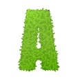 Uppecase letter A consisting of green leaves vector image