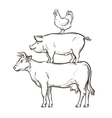 hand drawn cow pig chicken vector image