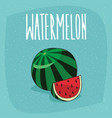 isolated ripe watermelon fruit and cut piece vector image