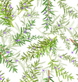 seamless texture of rosemary vector image