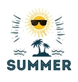 summer poster sunny sunglasses funny vector image