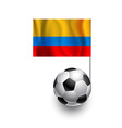 Soccer Balls or Footballs with flag of Columbia vector image vector image