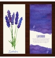 banners with watercolor lavender vector image