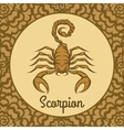 Scorpion logo icon vector image