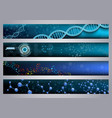 molecular structure and dna banners background vector image